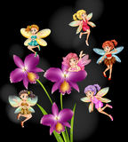 Fairies flying around orchid flowers Royalty Free Stock Image