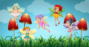 Fairies flying in the mushroom garden Stock Photo