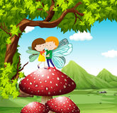 Fairies flying on the mushroom Stock Images