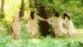 Fairies of the forest stock video footage