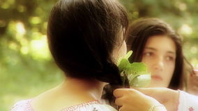 Fairies of the forest stock footage