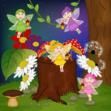 Fairies in forest Royalty Free Stock Photography