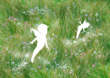 Fairies on the grass stock illustration
