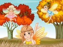 Fairies Stock Photos