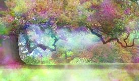 The Fairies Oak Tree. Big old oak with a long twisted branch and an ethereal light in the atmosphere showing a fantasy rainbow coloured aura and copy space stock image