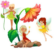 Fairies Stock Photos
