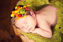 A fairly newborn child in a wreath of cones and berries lies on a stump and sleeps. Royalty Free Stock Photo