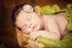 A fairly newborn child in a wreath of cones and berries lies on a stump and sleeps. Royalty Free Stock Photos