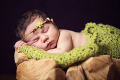 A fairly newborn child in a wreath of cones and berries lies on a stump and sleeps. Stock Images