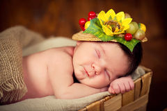 A fairly newborn child in a wreath of cones and berries lies on a stump and sleeps. Stock Photo