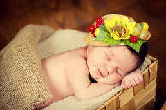 A fairly newborn child in a wreath of cones and berries lies on a stump and sleeps. A fairly newborn child in a wreath of cones and berries lies on a stump and Royalty Free Stock Photography