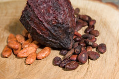 Fairtrade cocoa beans. With background Royalty Free Stock Photo