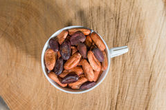 Fairtrade cocoa beans Stock Image