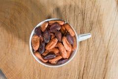 Fairtradecacaobonen Stock Afbeelding