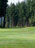 Fairway de terrain de golf photo libre de droits