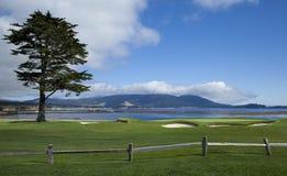 Fairway e verde do perto do oceano fotografia de stock royalty free