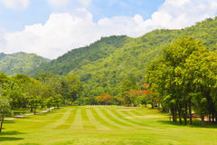 Fairway of a golf course beside the mountain. Golf fairway of a golf course, surrounded by bushes and trees, beside the mountain Stock Photography