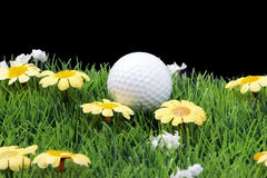 Fairway with golfball Stock Photos