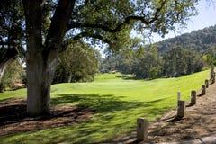 Fairway Home luxuoso da visão e verde aberto Fotografia de Stock Royalty Free