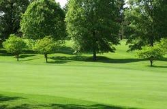 Fairway verde Imagens de Stock Royalty Free