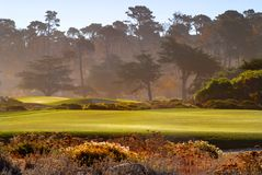 Fairway view of golf course in Pebble Beach California. Bathed in sunlight Royalty Free Stock Photo