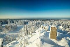 Fairy ландшафт зимы с снегом покрыл деревья Стоковые Фото