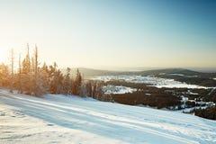 Fairy ландшафт зимы с снегом покрыл деревья Стоковая Фотография RF