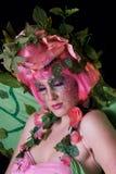 fairy весна Стоковые Изображения