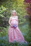 fairy весна Стоковые Изображения RF
