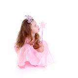 fairy волшебство Стоковые Изображения