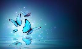 Fairy голубые бабочки на воде стоковые изображения