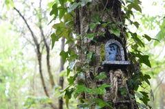 Fairy дом на дереве Стоковое Изображение RF