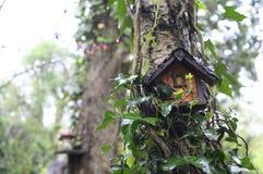 Fairy дом на дереве Стоковое фото RF