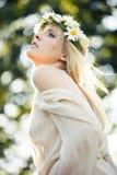 fairy лето Стоковые Изображения