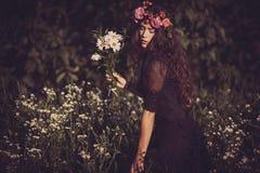 fairy лето Стоковая Фотография RF