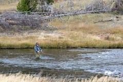 FAIRY ЗАВОДЬ, YELLOWSTONE/USA - 28-ОЕ СЕНТЯБРЯ: Рыбная ловля мухы в Fai Стоковая Фотография