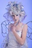 fairy зима Стоковые Изображения RF