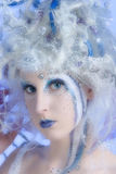 fairy зима Стоковое Изображение