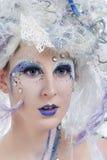 fairy зима Стоковые Фото