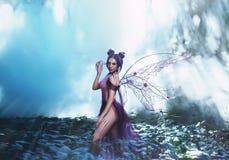 Fairy кокетка идя в туман Стоковая Фотография