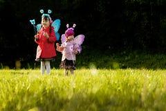 fairy крыла девушок Стоковые Изображения RF