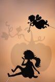 Fairy кума и Золушка затеняют марионетку и тень тыквы Стоковая Фотография RF
