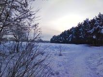 Fairy ландшафт зимы Стоковая Фотография