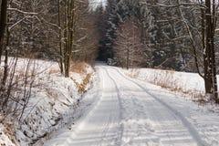 Fairy лес зимы в снеге зима времени снежка цветка Тяжелое падение снега зимы Деревья зимы в снежке Красивый ландшафт зимы с sn Стоковое Фото