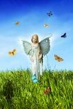 fairy лужок Стоковые Фото