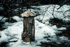 fairy дом Стоковая Фотография