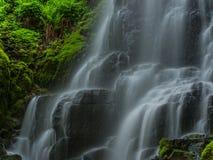 Fairy падений Culumbia реки ущелья конец вверх Стоковое Изображение RF