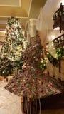 Fairy рождество кабеля Стоковое Изображение RF