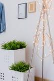 Fairy света в предназначенной для подростков комнате Стоковые Изображения