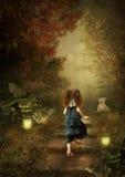 fairy сказ дороги к стоковое фото rf